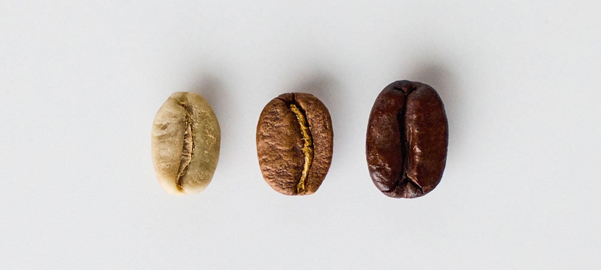 Ilmastonmuutos tuo haasteita kahvinviljelylle